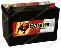 Легковой аккумулятор Banner Power Bull P95 04 (D31FL)