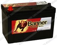 Легковой аккумулятор Banner Power Bull P95 05 (D31FR)